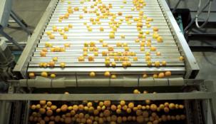 Compac Citrus Case Study – Stellenpak
