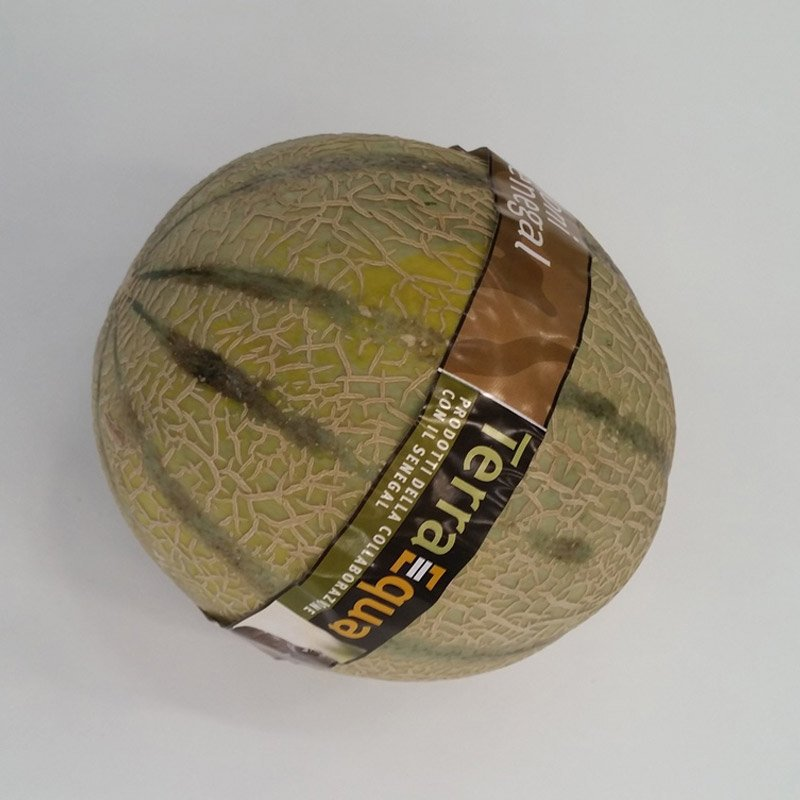 Melon-taped-3